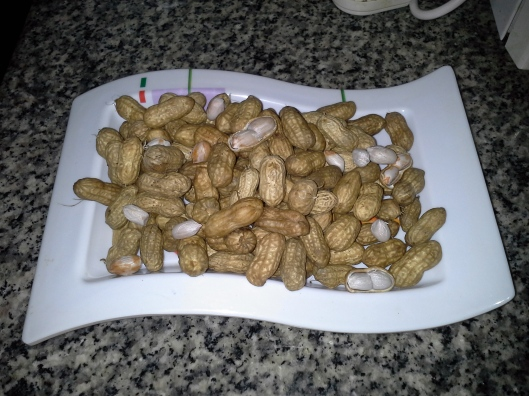 Boiled white skin groundnuts