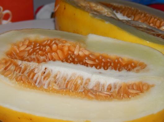 Fresh Golden Honeydew Melon