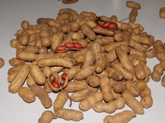 Raw groundnuts